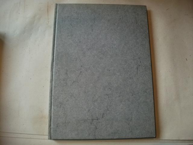 Sxripura Aegyptiorum Demotica.: Brugsch, Heinrich