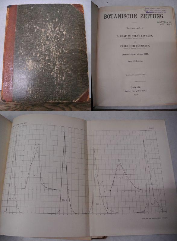 Die Variation im Andröceum der Stellaria media Cyr., in: BOTANISCHE ZEITUNG. 61. Jg. (1903).