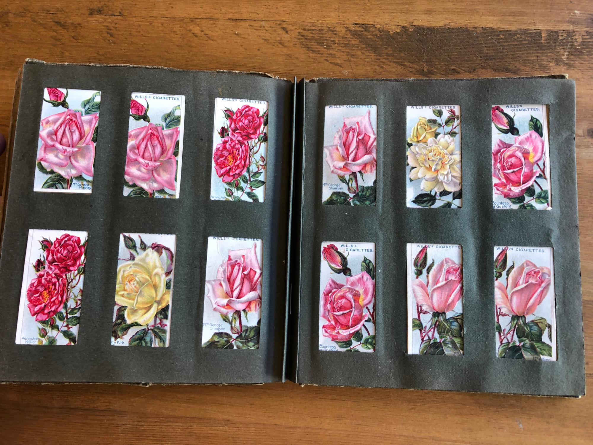 Wills Cigarette Cards / Roses, Second Series: 85 cards by