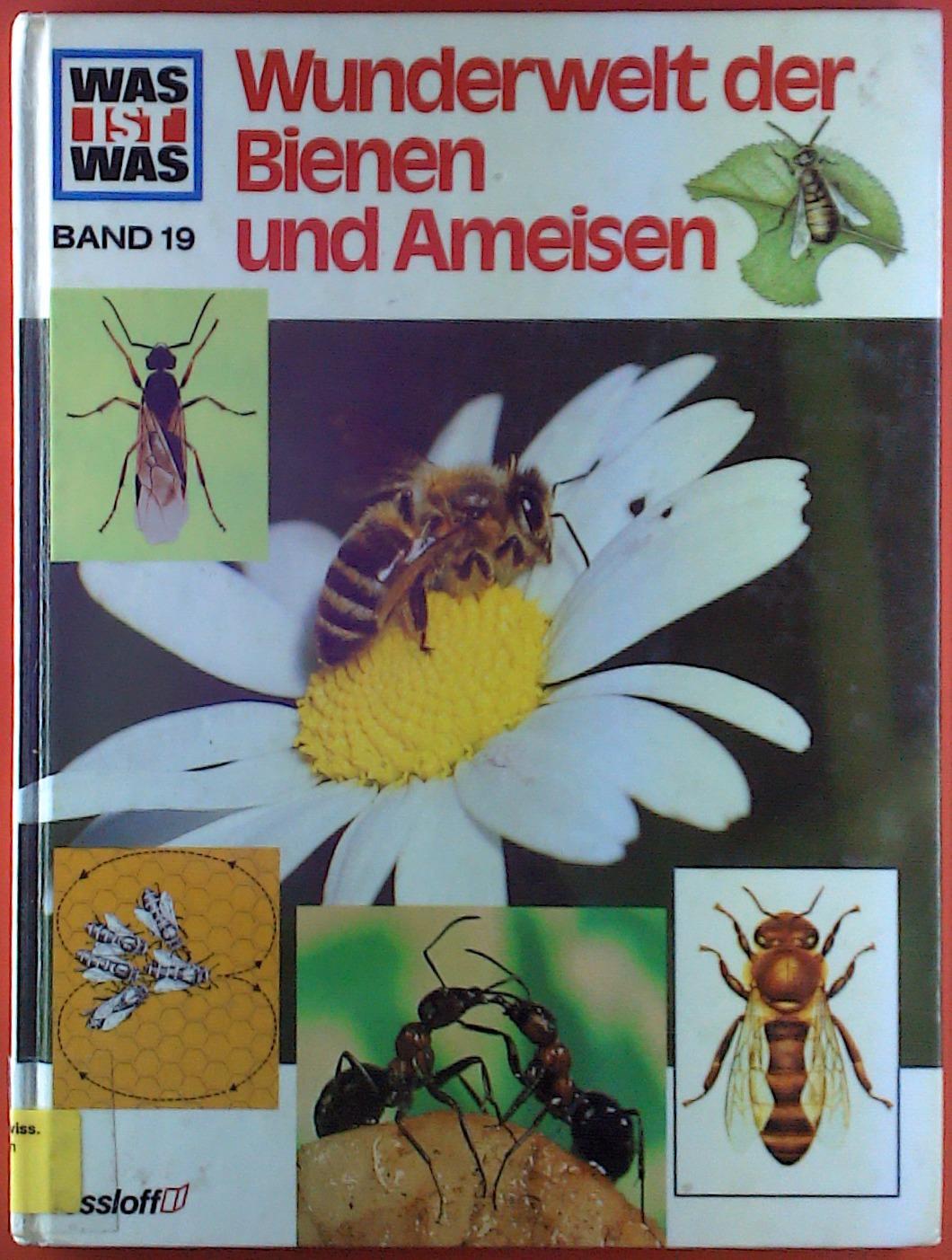 Wunder der Bienen und Ameisen. Ein Was: Ronald N. Rood