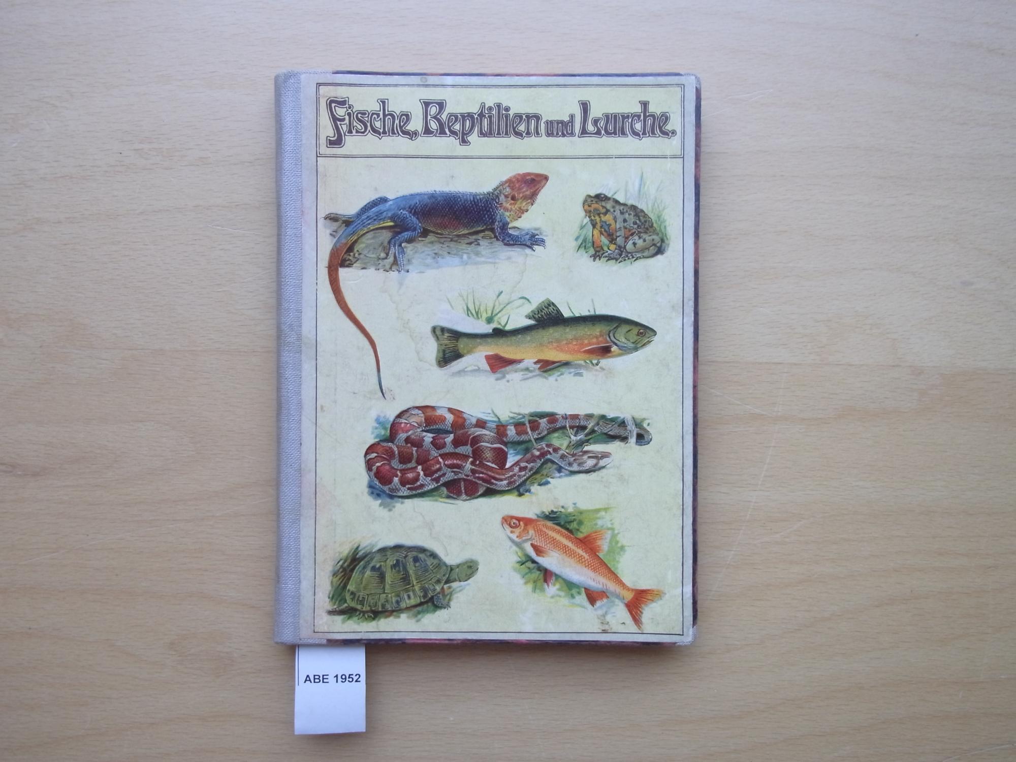 Fische, Reptilien und Lurche. 226 Abbildungen auf: Schleyer, August