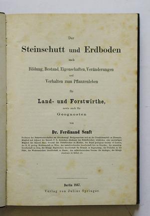 Der Steinschutt und Erdboden nach Bildung, Bestand,: Senft, Ferdinand