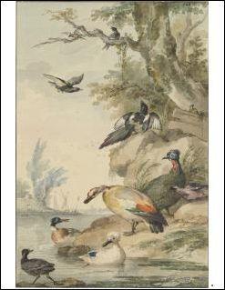 Kabinet der Heerlijkste Tekenwerken. 18e eeuwse Nederlandse tekeningen uit de verzameling van de Koninklijke Musea voor Schone Kunsten van Belgie - Collectief.