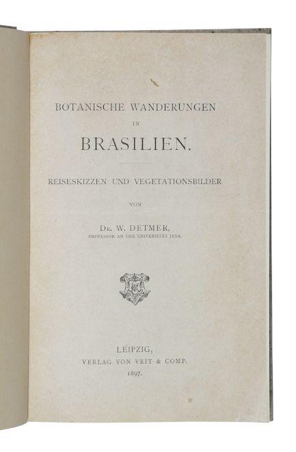 Botanische Wanderungen in Brasilien. Reiseskizzen und Vegetationsbilder.: Detmer, W.