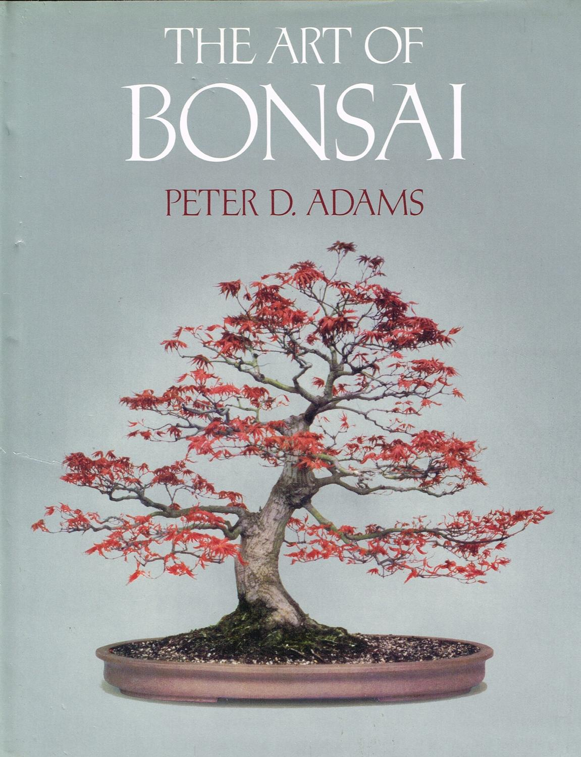 The Art Of Bonsai By Peter D Adams Fine Hardcover 1981 1st Edition Sapphire Books