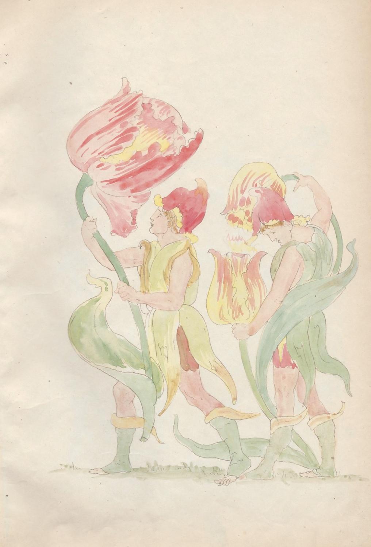 Watercolor drawings of Walter Crane's Flora Feast: Mirovszky-Greguss, Gizella; [Crane,