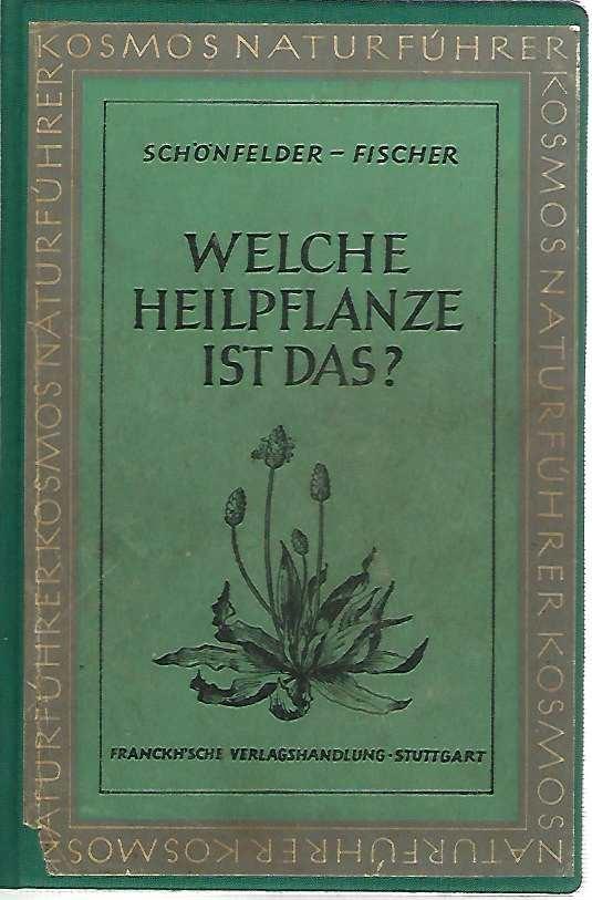 Welche Heilpflanze ist das? Deutsche Heil- und: Schönfelder, Bruno und