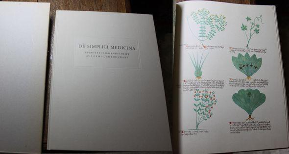 De simplici medicina Kräuterbuch-Handschrift aus dem letzten: Pfister, Arnold: