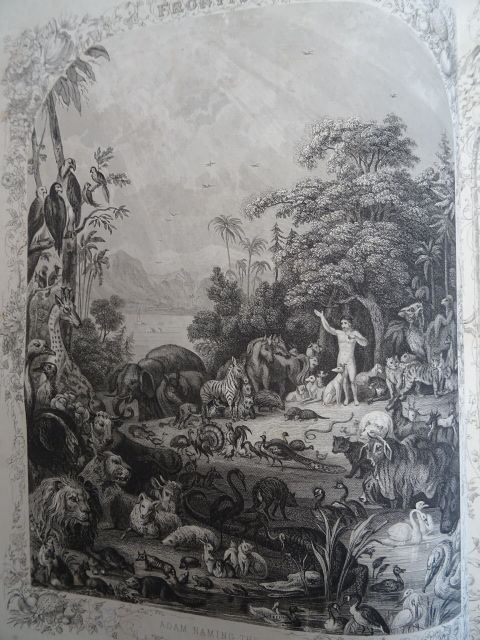 The Self Interpreting Family Bible, with an: Brown, John.