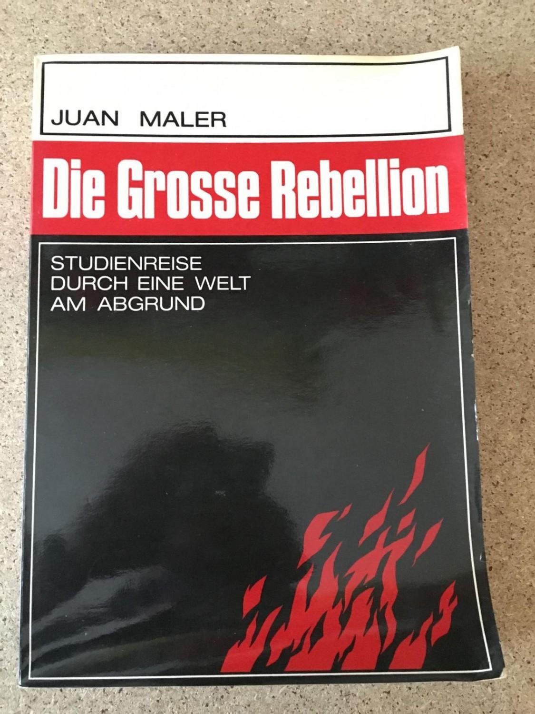 Die Grosse Rebellion - Studienreise durch eine: Maler, Juan: