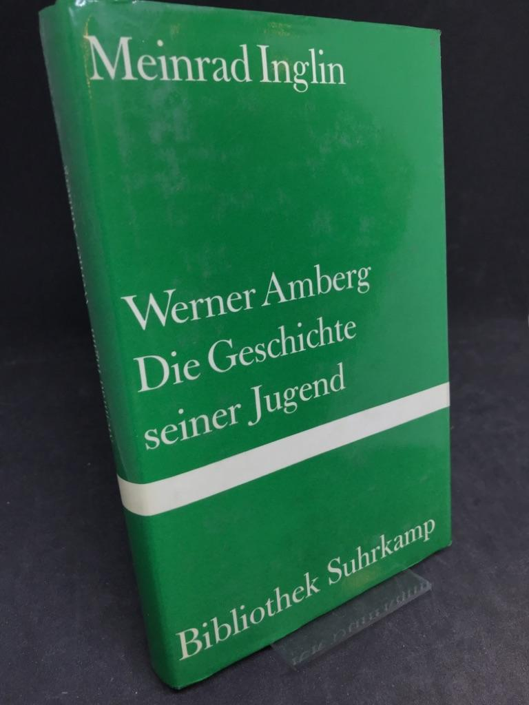 Werner Amberg, die Geschichte seiner Jugend. Roman.: Inglin, Meinrad: