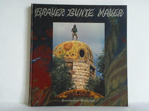 Brauer bunte Mauer = Varicoloured wall =: Brauer, Arik