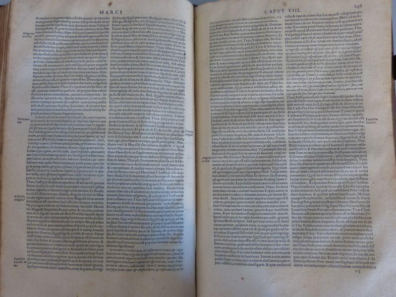 D. Thomae Aquinatis Enarrationes, quas cathenam vere: Thomas von Aquin,
