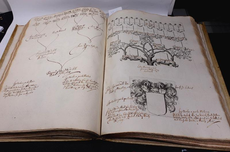 Großer Pergamentband mit zahlreichen handschriftlichen Stammbäumen deutscher: Großes barockes Stammbuch