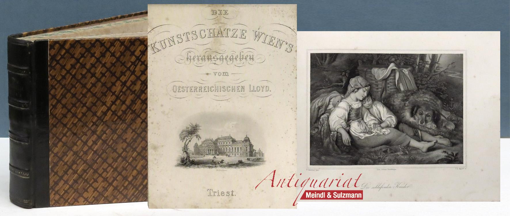 Die Kunstschätze Wien's.: Perger, Anton Rt.