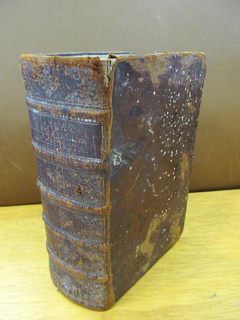 Janua Hebraeae Linguae Veteris Testamenti: In Qua: Reineccius, Christian