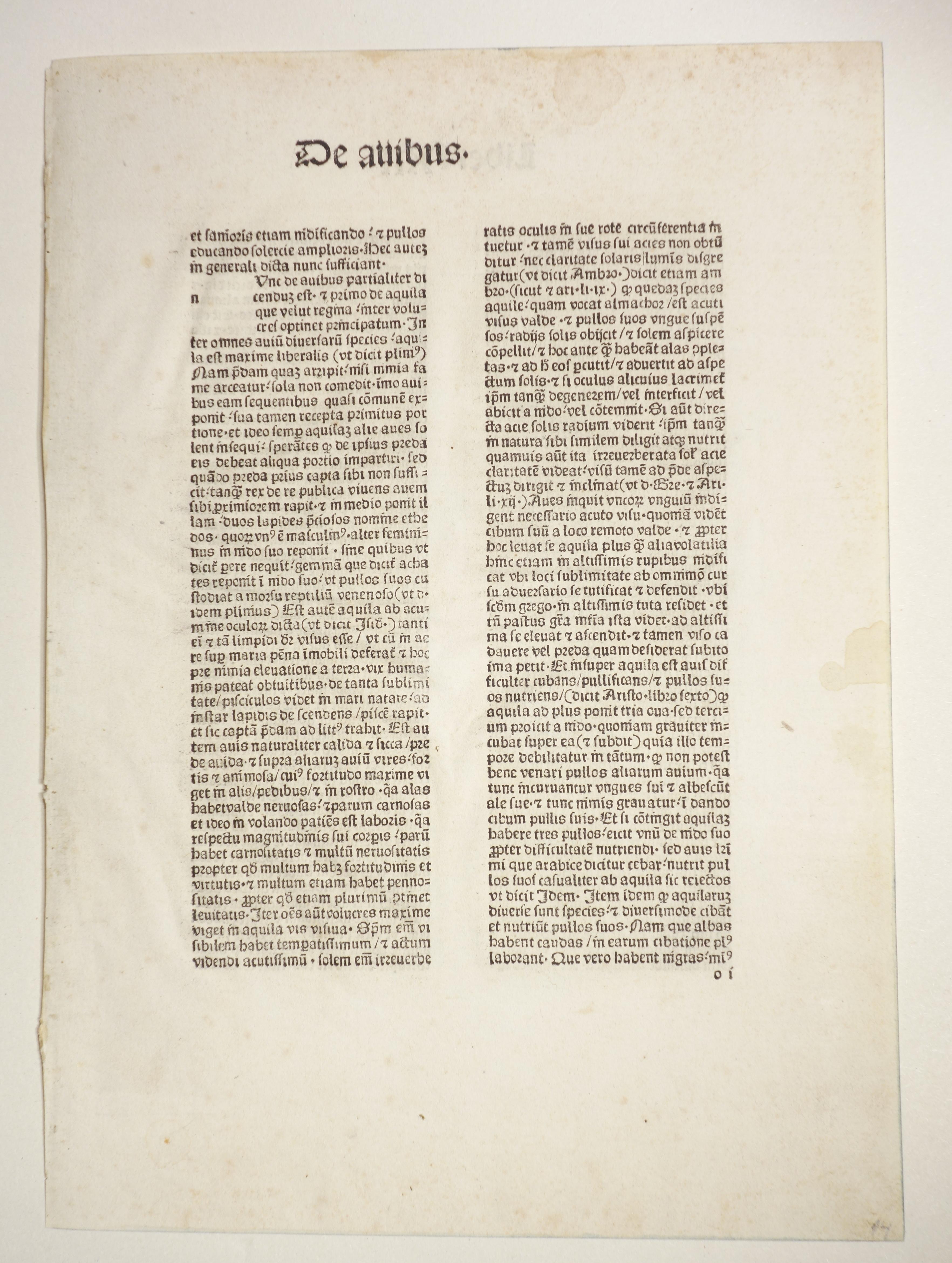De proprietatibus rerum (GW 3404, HC 2500).: Bartholomaeus Anglicus: