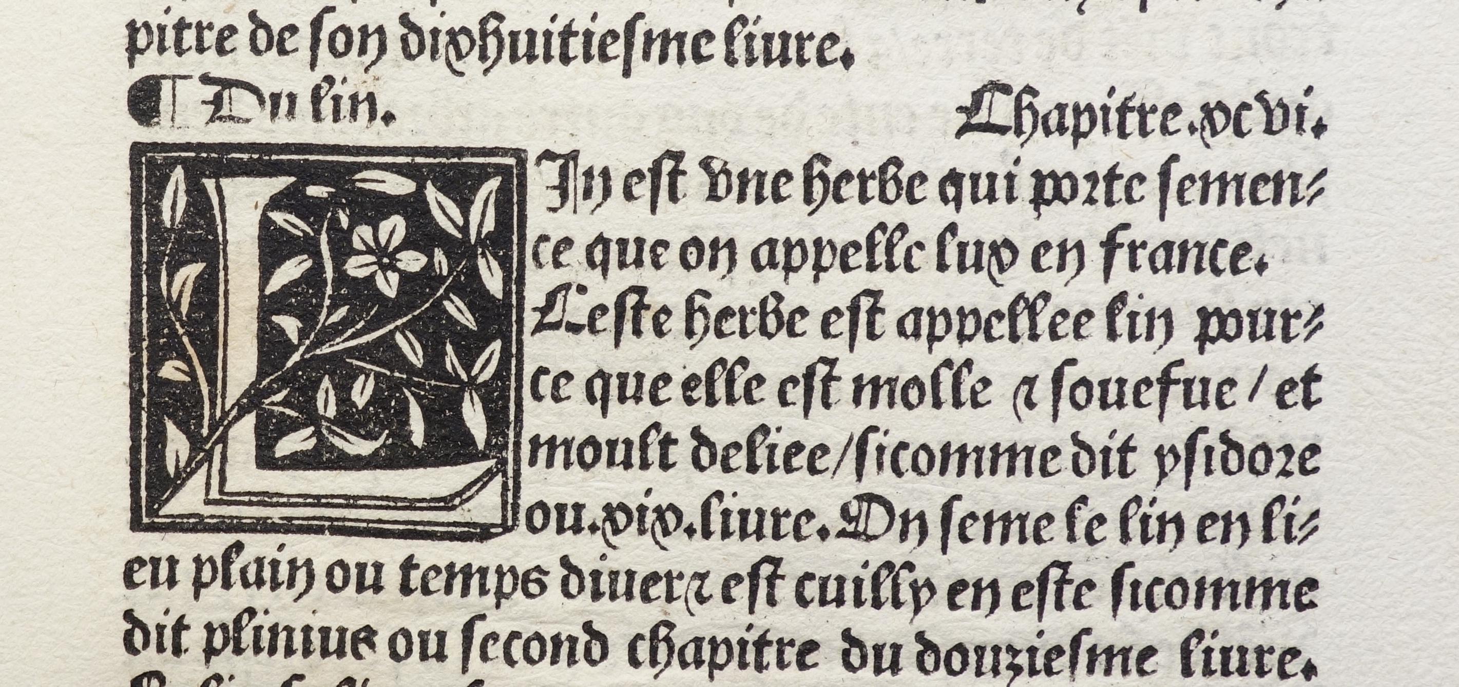 De proprietatibus rerum, franz. von Jean Corbichon: Bartholomaeus Anglicus; Pierre