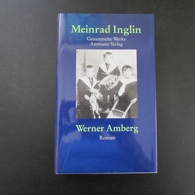 Werner Amberg - Die Geschichte seiner Jugend: Inglin, Meinrad: