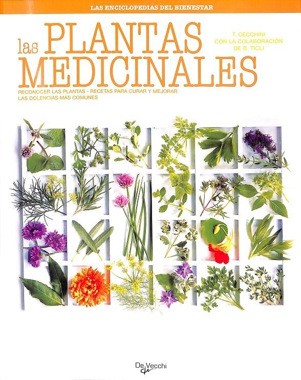 LAS PLANTAS MEDICINALES. RECONOCER LAS PLANTAS, RECETAS PARA CURAR Y MEJORAR DOLENCIAS MÁS COMUNE - CECCHINI, TINA