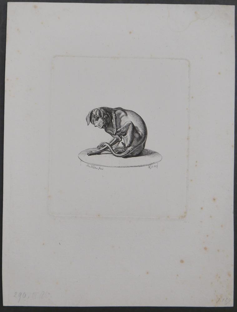 Der Hund nach Peter Fischer. 1829.: Klein, Johann Adam.