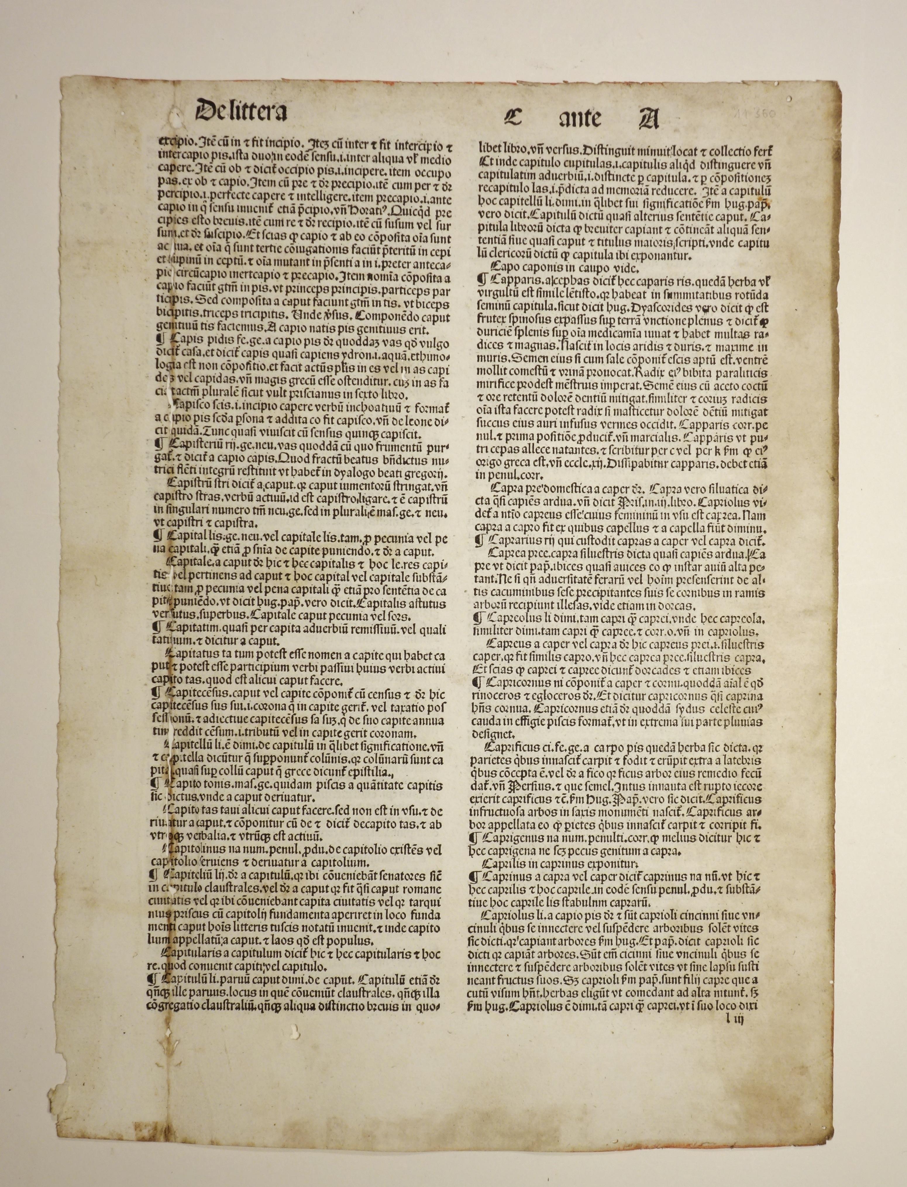Catholicon (GW 03191). De littera C ante: Johannes Balbus: