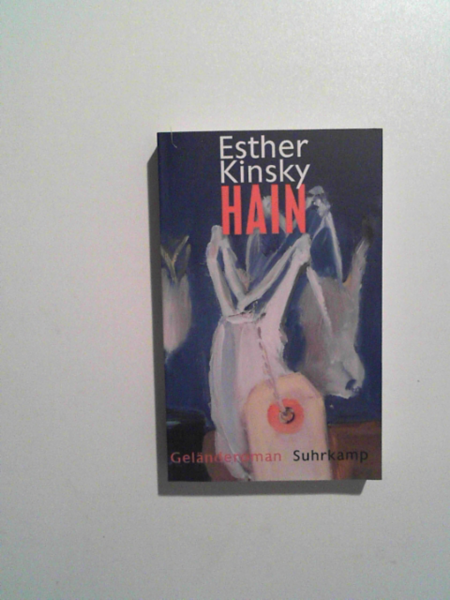 Hain: Geländeroman (suhrkamp taschenbuch): Esther Kinsky