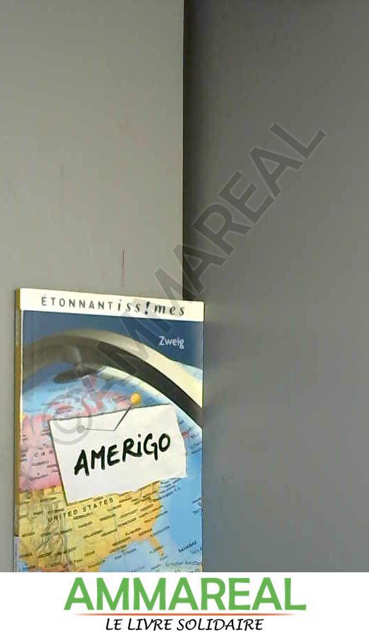 Amerigo : Récit d'une erreur historique - Stefan Zweig et Elisabeth Landes