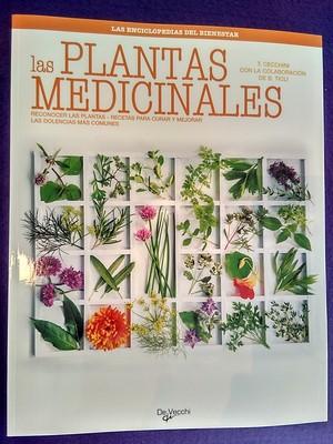 Las plantas medicinales: Reconocer las plantas, recetas para curar y mejorar las dolencias más comunes - Tina Cechinni / Bernardo Ticli