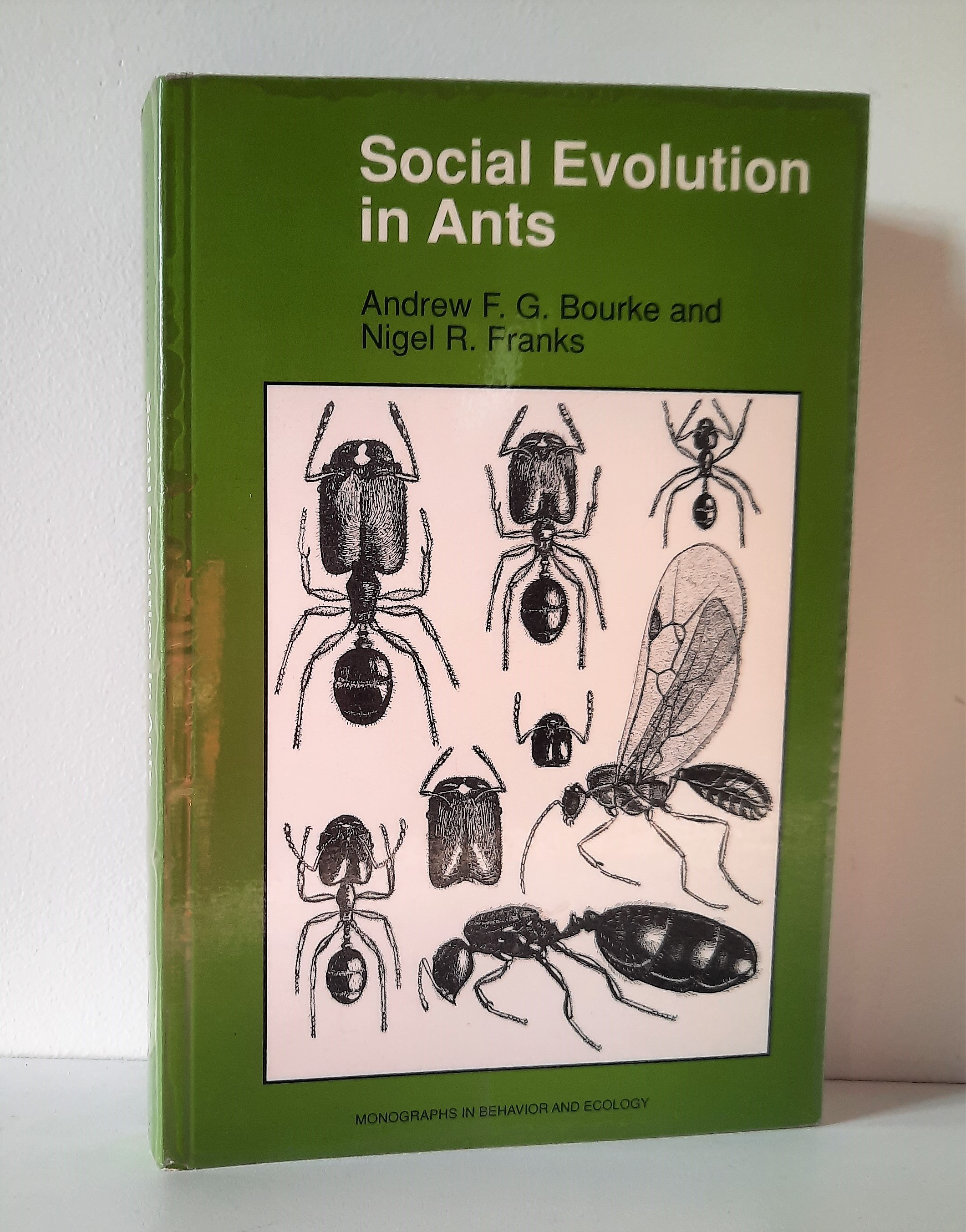 Social Evolution in Ants - Bourke, Andrew F.G.; Franks, Nigel R.