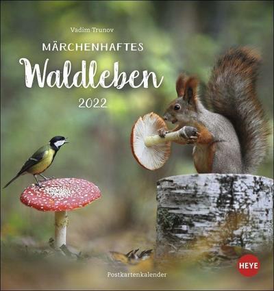 Vadim Trunov: Märchenhaftes Waldleben Postkartenkalender 2022 - Vadim Trunov