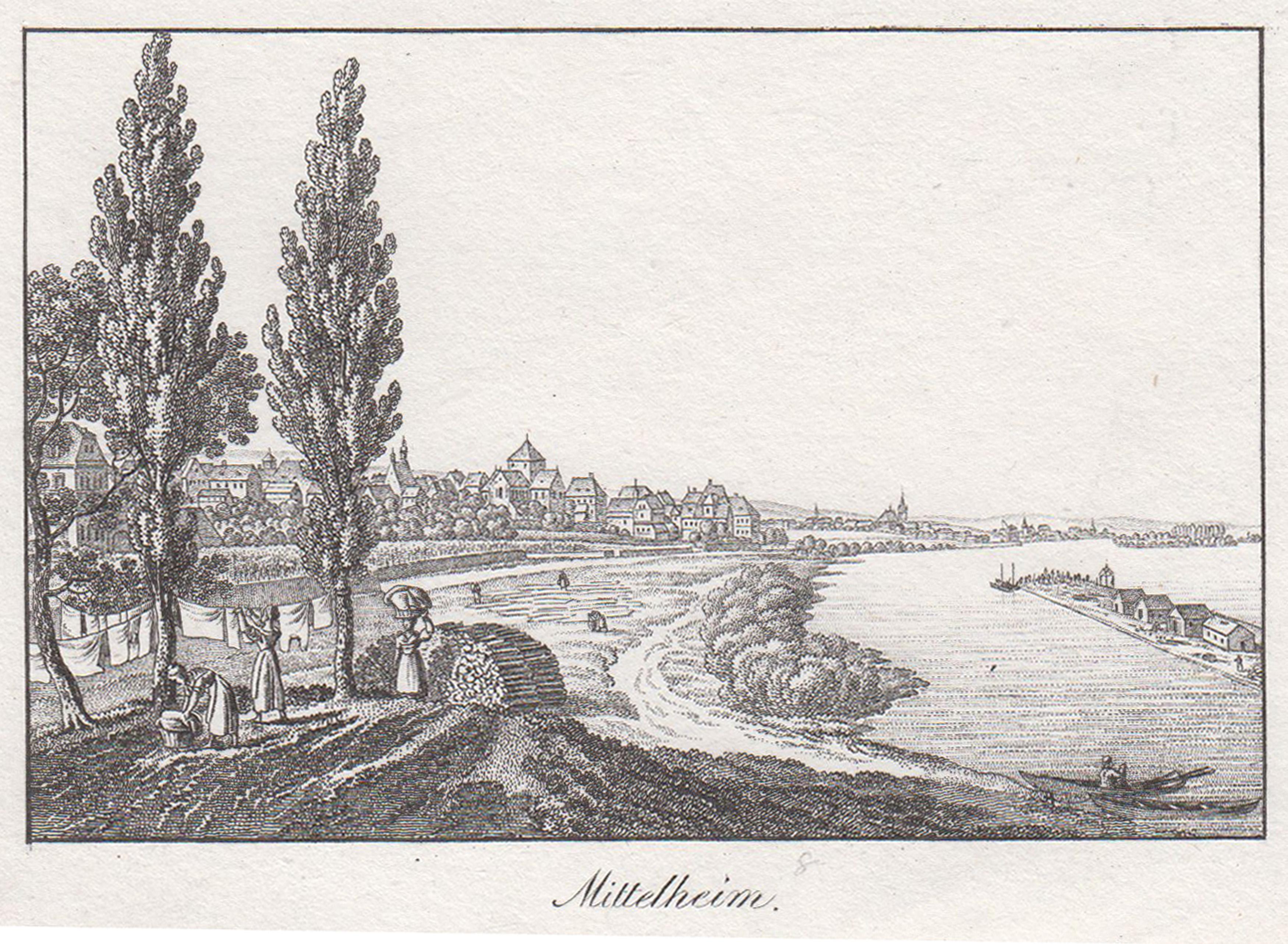 """Gesamtans. v. Rheinufer aus, """"Mittelheim"""".: Oestrich - Winkel:"""