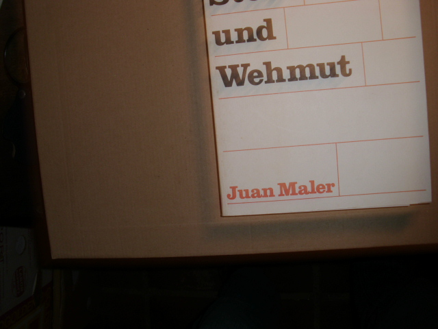 Mit Freude, Stolz und Wehmut: Maler, Juan: