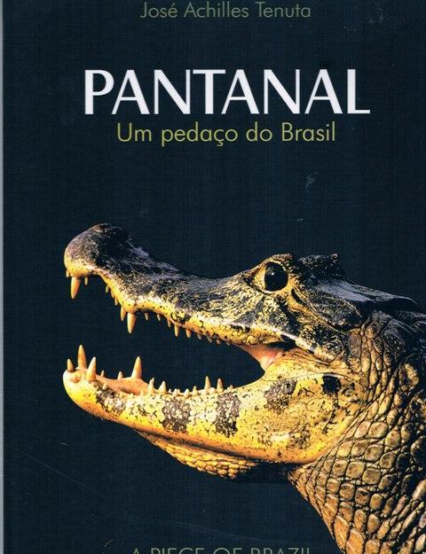 PANTANAL: UM PEDACO DO BRASIL. (A PIECE OF BRAZIL) Bi-lingual. - JOSE ACHILLES TENUTA. TRANSLATOR: STEVE BRIAN ROBINSON.