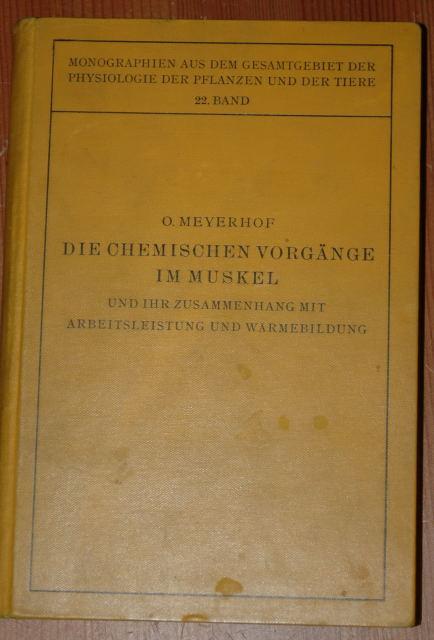 Die chemischen Vorgänge im Muskel und ihr: Meyerhof, Otto: