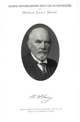1936 - Portrait, Brustbild, Photographie, Lichtdruck 8,5: Hering, Heinrich Ewald