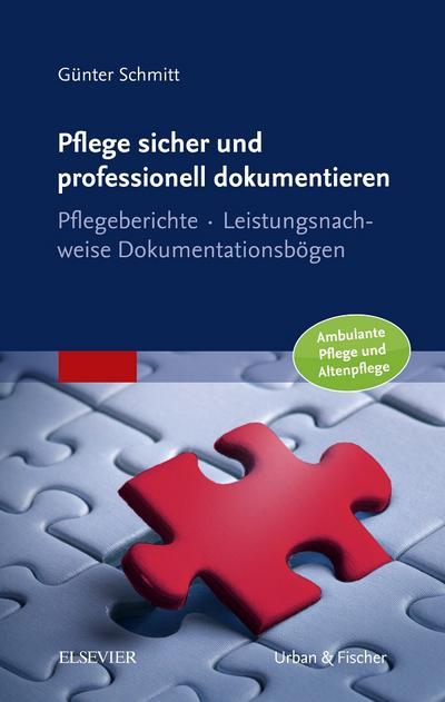 Pflege sicher und professionell dokumentieren : Pflegeberichte - Leistungsnachweise - Dokumentationsbögen / Ambulante Pflege und Altenpflege - Günter Schmitt