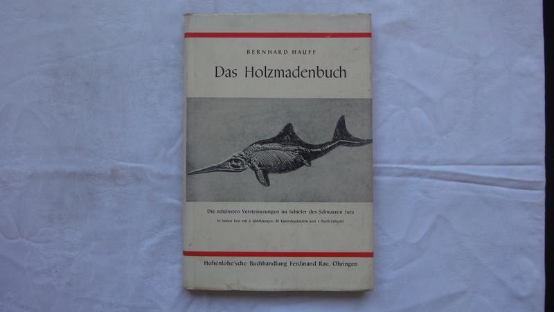 Das Holzmadenbuch: Hauff Bernhard Dr.