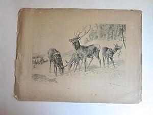 Original Ink Drawing of Four Elk: Beard, J. [James]
