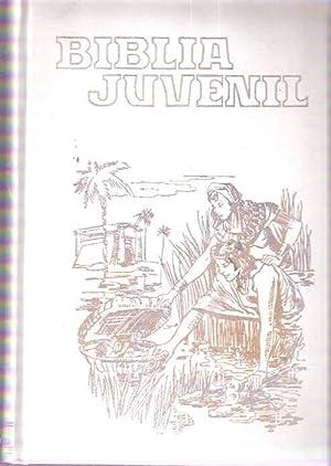 Biblia juvenil: Ruiz Valdivielso, Abilio