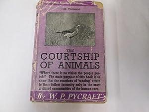 The Courtship of Animals: Pycraft, W. P.