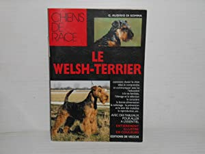 Chiens de race; Le welsh-terrier