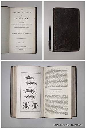 The natural history of insects, compiled from: SWAMMERDAM, JAN (et