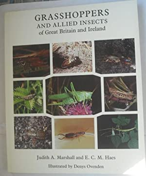 Grasshoppers and Allied Insects of Great Britain: Marshall, Judith A.;