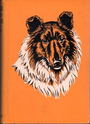 Lassie Come-Home: Knight, Eric; illustrated