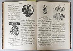 Die Drei Reiche der Natur. Erste Abtheilung: Die Naturgeschichte des Thierreichs. 5 Bände. 1: ...