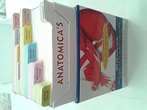 Anatomica's Flash Cards: Dr. Kurt H. Albertine, Ph. D