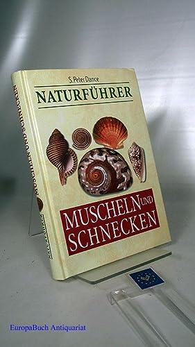 Muscheln und Schnecken Naturführer Fotos: Matthew Ward.: Dance, Stanley Peter