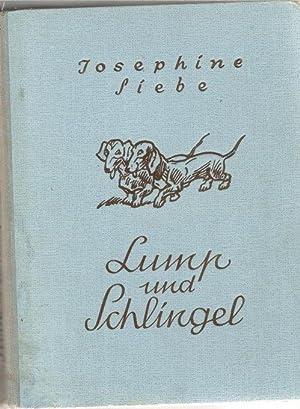 Lump und Schlingel ein schlimmes Brüderpaar eine lustige Dackelgeschichte mit 3 farbigen ...