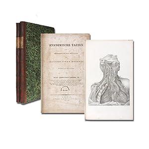 Anatomische Tafeln zur Beförderung der Kenntniss des: Loder, Christian Just(us